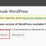 ShawnLiv Dot Com Upgraded To WordPress 2.8
