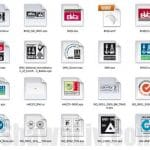 Giveaway A Collection of Vector Certification Logo