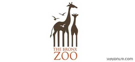 Bronz Zoo Logo Meaning