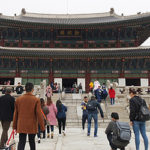 Top 19 Fun & Family-Friendly Things to Do in Korea – Cherry Blossom #1