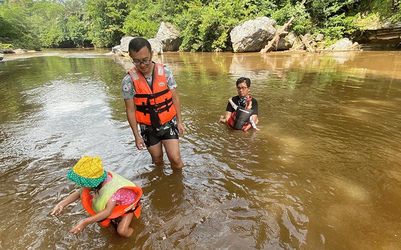 Rainforest Kayaking - Swimming