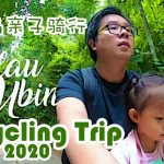 Pulau Ubin Cycling trip with kid 2020 | A Singapore Day Trip